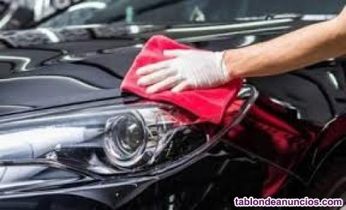Mecánico, lavadero de coches...