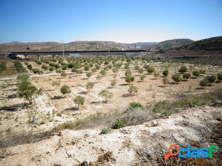 Vende terreno en Aspe, Alicante, Costa Blanca