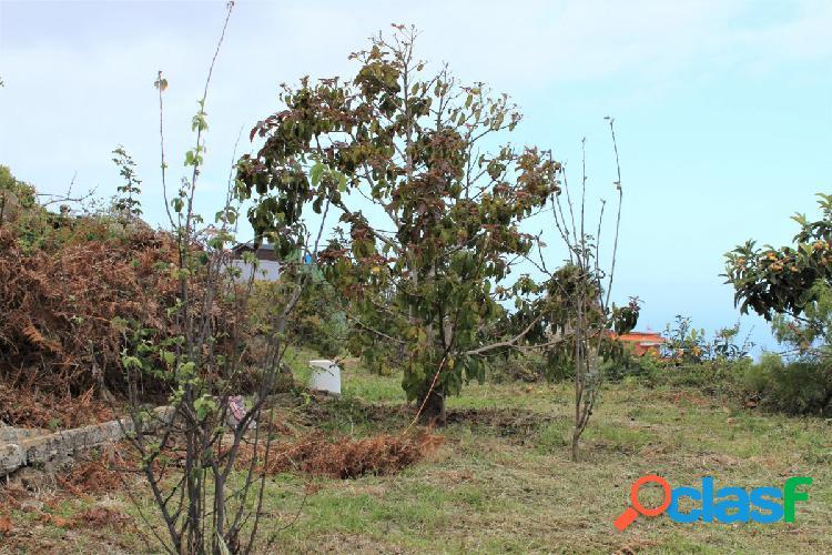 Finca rústica con maravillosas vistas en La Guancha