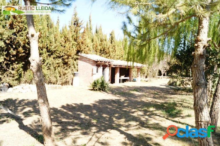 HUERTO (DE UNOS 654 M2) CON CASETA DE APEROS, EN TÀRREGA.