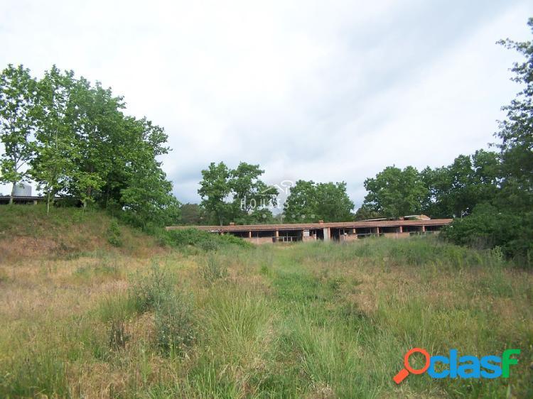 Finca agrícola con casa y 10 hectáreas. Plana y con mucha