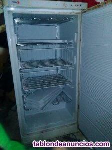 Vendo congelador en buen estado