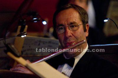 Dono classes particulars de flauta travessera i harmonia
