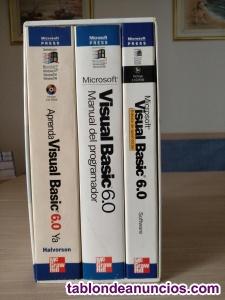 Visual basic 6.0 microsoft