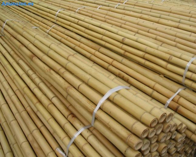 Tutor De Bambu,CañA De Bambu,Bambu Para Planta