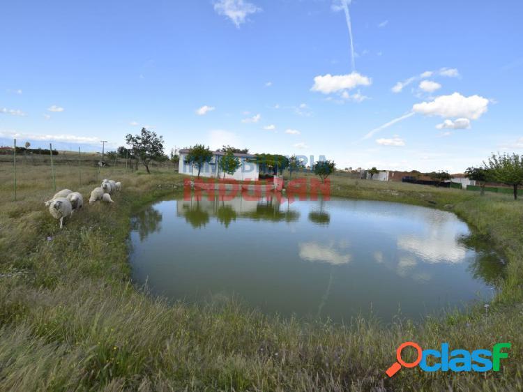 Parcela de 7200 m2 con casa, pozo de sondeo, laguna,