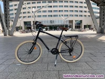Magnifica bicicleta urbana berg park 3.
