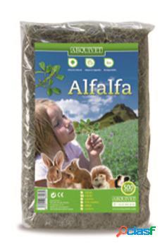Arquivet Alfalfa 500 Gr 500 GR