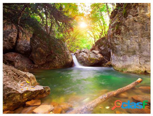 Artgeist Fotomural Un Río De Montaña 400x309 cm