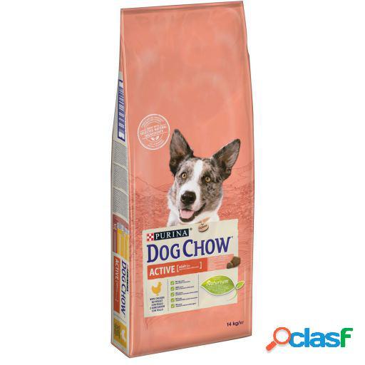 Dog Chow Active Con Pollo para Perros 14 KG