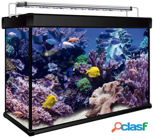 Ica Kit Marino Aqualux Pro 68 19 KG