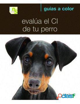 KNS Ediciones Evalúa El Ci De Tu Perro