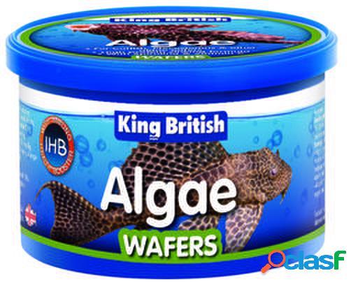 King British Algae Wafers (With IHB) 100 gr