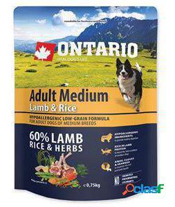 Ontario Adult Medium Cordero y Arroz 12 KG