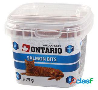 Ontario Cat Snack Salmon Bits 75 gr 75 GR