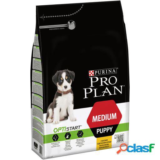 Pro Plan Pienso Puppy Original Pollo y Arroz 12 KG