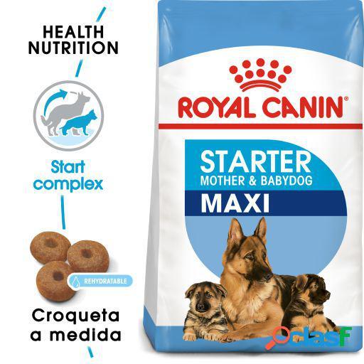 Royal Canin Maxi Starter Mother&Babydog 4 KG