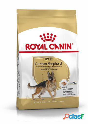 Royal Canin Pastor Alemán Adult 3 Kg