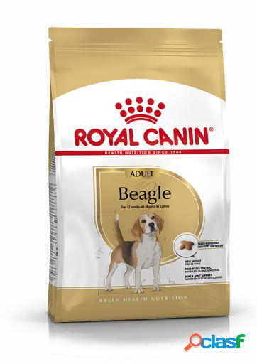 Royal Canin Pienso Beagle Adult 3 Kg
