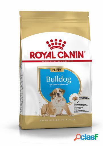 Royal Canin Pienso Bulldog Junior 12 KG
