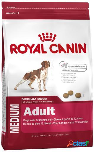 Royal Canin Pienso Medium Adult 15 Kg