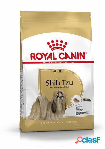 Royal Canin Pienso Shih Tzu Adult 3 Kg