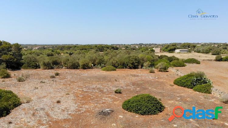 Terreno de 14.200 m2 a 4 km de Colonia de Sant Jordi