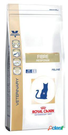 Royal Canin Pienso Fibre Response Feline 4 KG