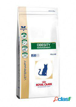 Royal Canin Pienso Obesity Management Feline 6 KG