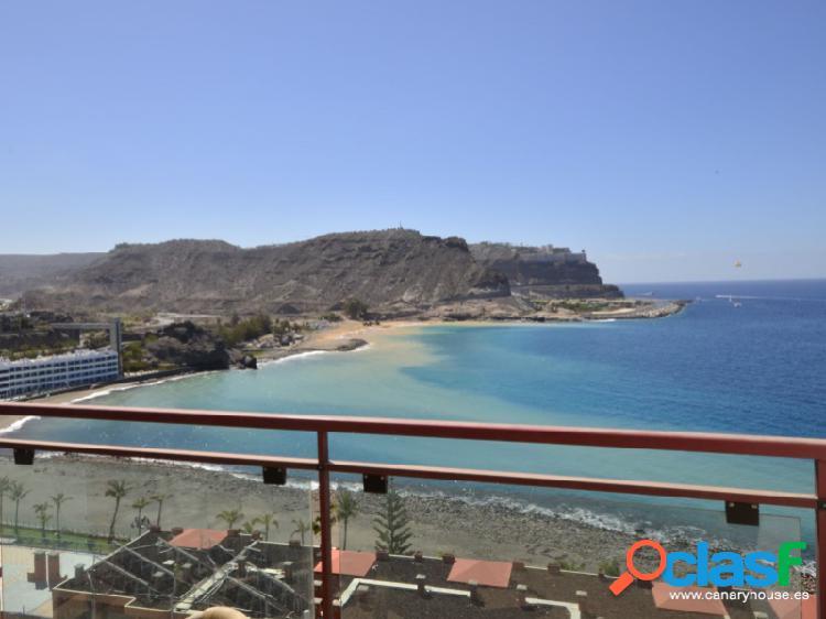 SU EMINENCIA, apartamento para alquilar en Playa del Cura,