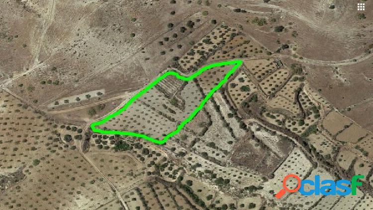 Finca Rústica de 6.221 m2, en Los Llanos de Sorbas junto a