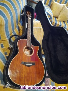 Copia guitarra acustica taylor k 24 y amplificador fame 60