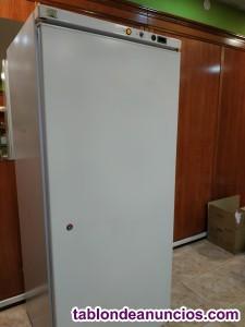 Congelador vertical 1,90m.