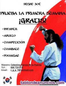 Se dan clases de taekwondo