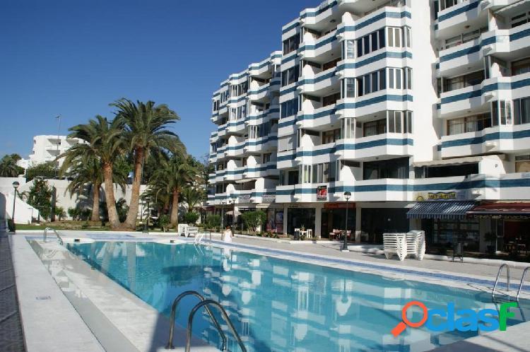 Apartamento reformado con vista piscina cerca del Yumbo