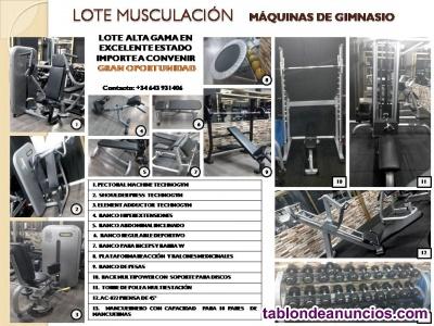 Lote de maquinas de gimnasio