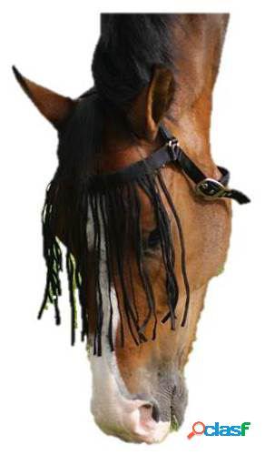 QHP Frontalera anti moscas extra negro Pony