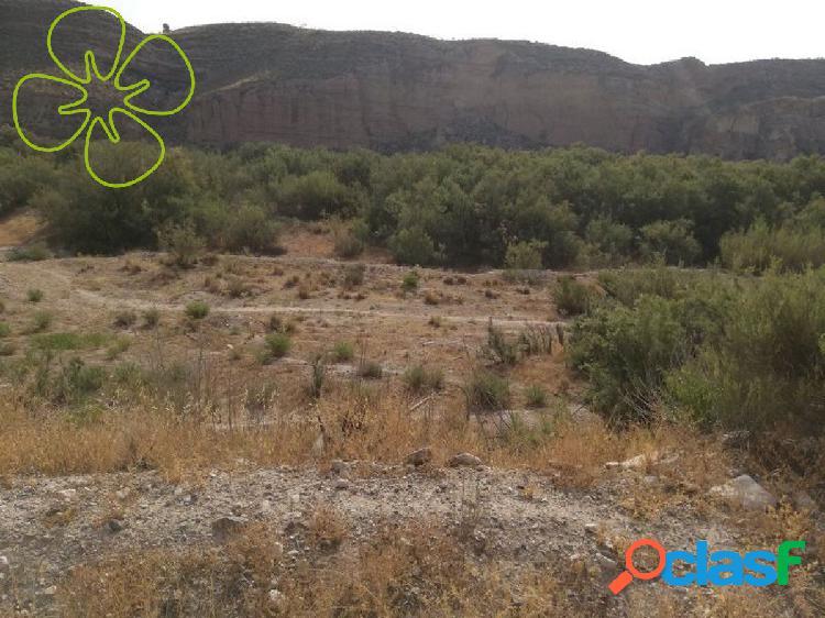 Se vende finca rustica en carretera de la Parroquia, Lorca