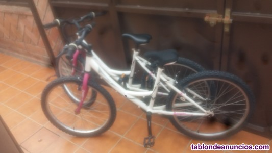 Dos bicicletas en perfecto estado