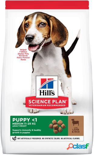 Hill's Science Plan Puppy Medium Cordero y Arroz 12 KG