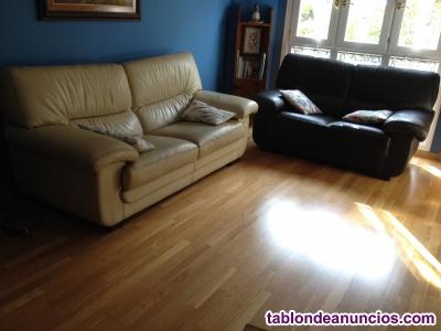 Vendo 2 sofás de piel