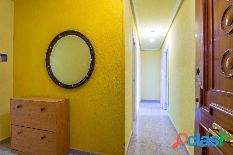 Piso 4 dormitorios y dos baños en Barrio del carmen Molina