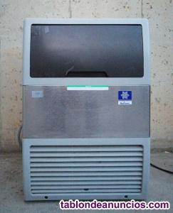 Máquina hielo manitowok ecs051al
