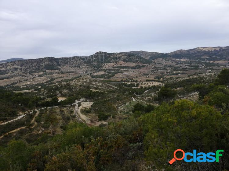 Parcela rústica con impactantes vistas en la montaña