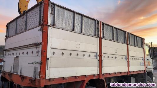 Caja de 6 metros para camion