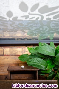Mesa / consola antigua de madera maciza