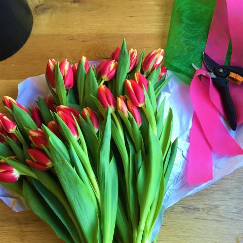 Tulipanes para decorar tu hogar u oficina