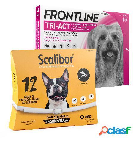 Frontline Tri Act Raza Toy + Scalibor