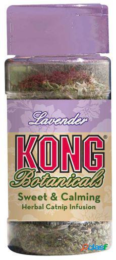 KONG Catnip Botanicals Lavanda 10gr 10 GR