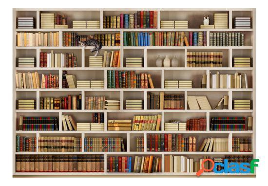 Artgeist Fotomural Biblioteca casera 300x210 cm
